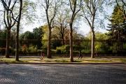Parc Monceau, mi-avril